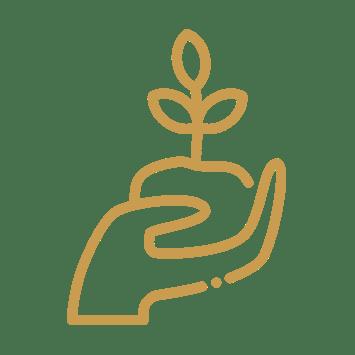 Ganzheitliche Ernährungsberatung Ayurveda