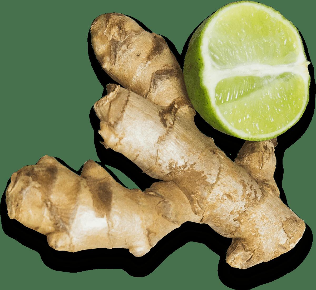 Ayurveda-Ernährungsberatung