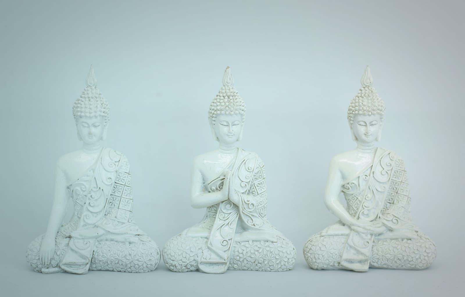 Ayurveda-Beratung - Kooperationen